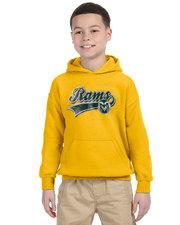CSU Youth Gold Hoodie